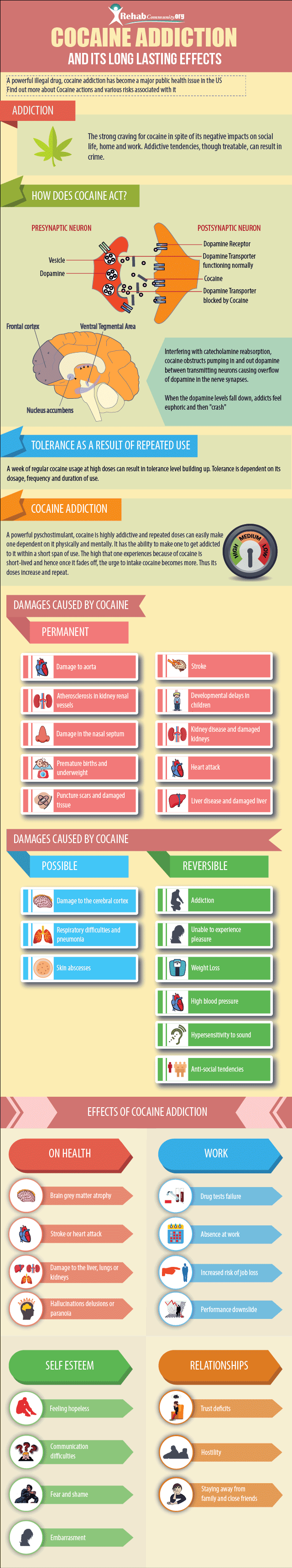 cocaine effects infographic
